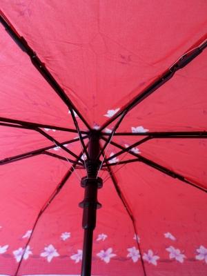 Зонт арт.120-80