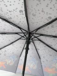 Зонт 120-98
